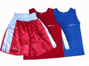 Рэй-Спорт Форма боксерская Ф5 синяя