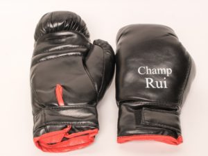 Champ Rui Боксерские перчатки