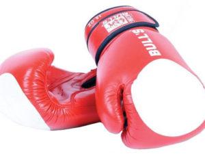 BULLS TT-2001 Боксерские перчатки
