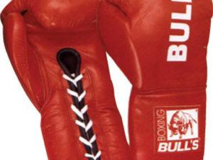 BULLS EM-249 Боксерские перчатки
