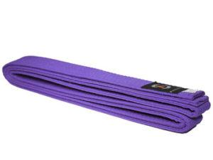 """Рэй-Спорт П14 Пояс для боевых искусств """"Фиолетовый"""""""